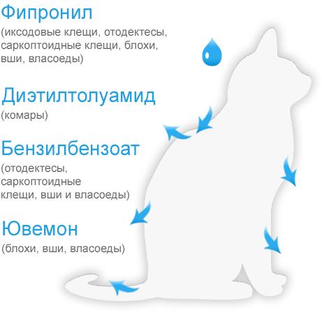 Принцип действия БлохНэт max капли для кошек и котят всех пород