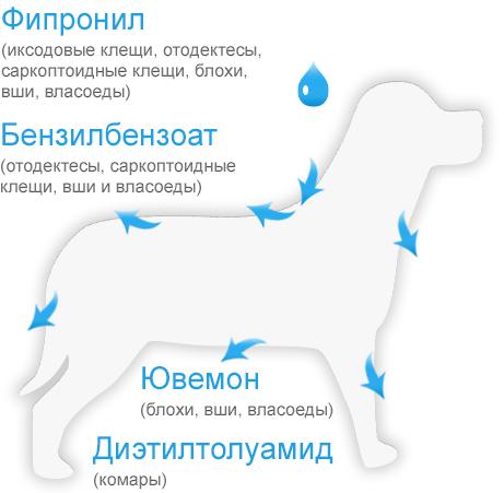Принцип действия БлохНэт max капли для собак с массой тела от 10 до 20 кг