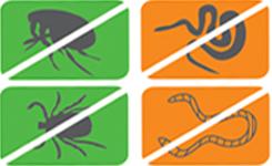 какие виды паразитов бывают у человека