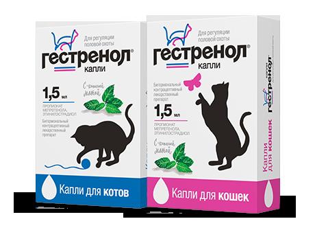 Капли для котов от меток